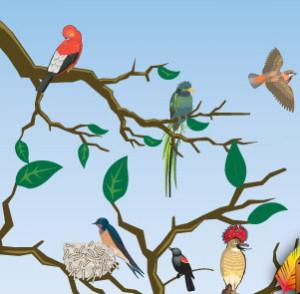 Howland's Island Van Tour @ Montezuma Audubon Center | Savannah | New York | United States